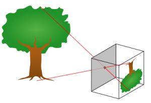 Funcionamiento de una cámara estenopeica o pinhole
